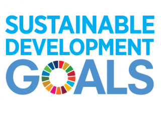 masimpact is aligned with leading international frameworks measuring social impact: SDGs, LBG & ONLBG.