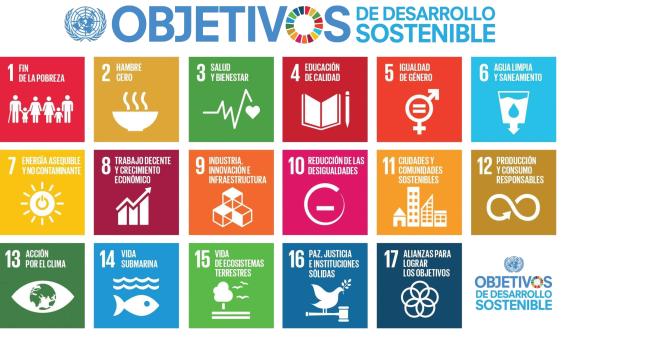 Mide tu impacto social usando las metodologías líderes a nivel internacional.